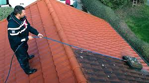 Professional Roof Cleaner